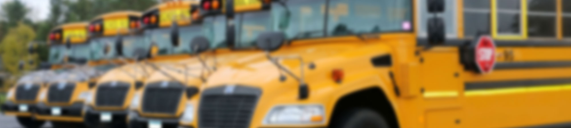 Blurred photo of yellow school buses lined up in rows